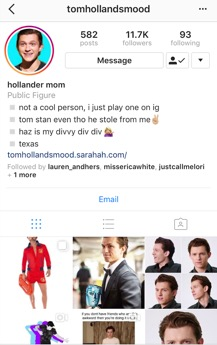 Lo has been involved in many fandoms. She has become a household name in the #Hollander following and is an influencer. Photo credit: Instagram